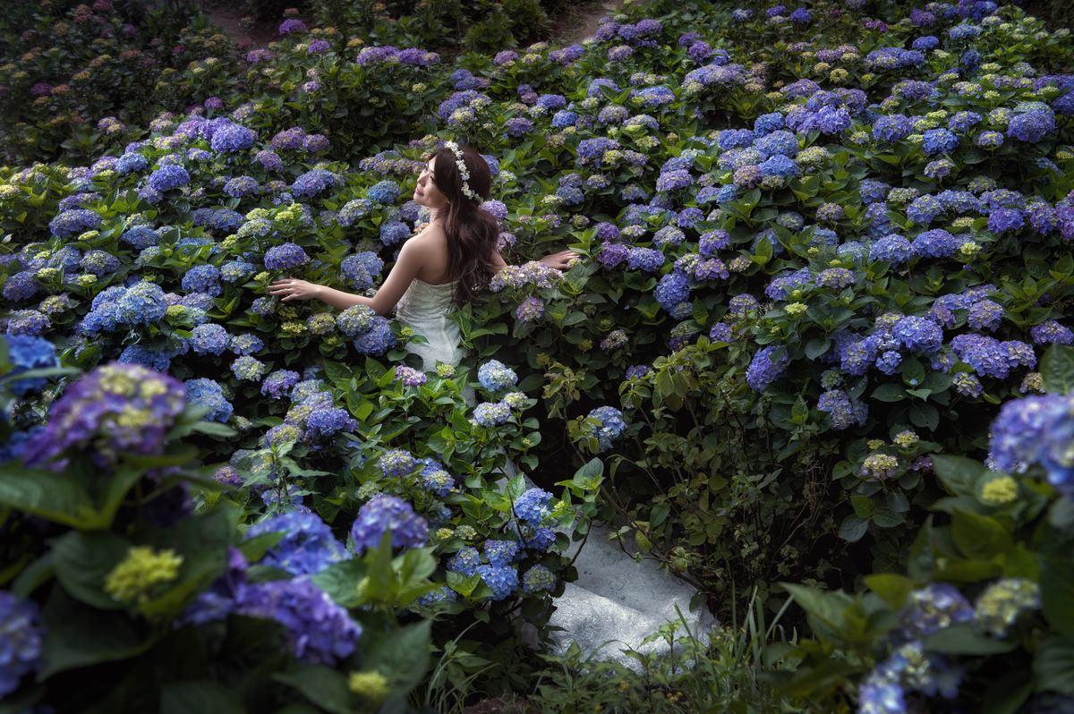 台北自助婚紗│繡球花叢中的花嫁公主~攝影Donfer-威勝&郁喬